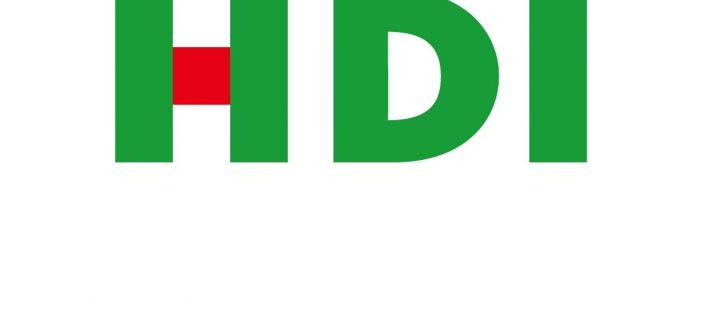 Celstraffen voor twee voormalige bestuurders van verzekeraar HDI